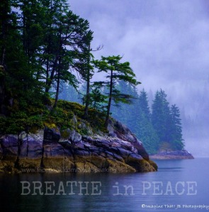 Breathe in Peace